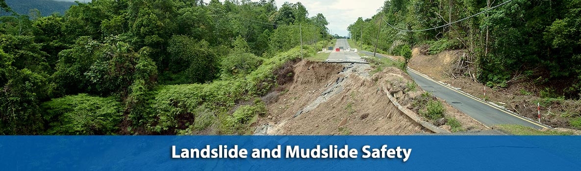 The image displays a straight road traveling down the middle of the picture from south to north, with trees with green leaves and foliage on either side of the road. The sky is blue with white, flat clouds. In the middle of the picture, half of the road washed away down the hill to the left after a landslide, and debris is scattered throughout the dirt.