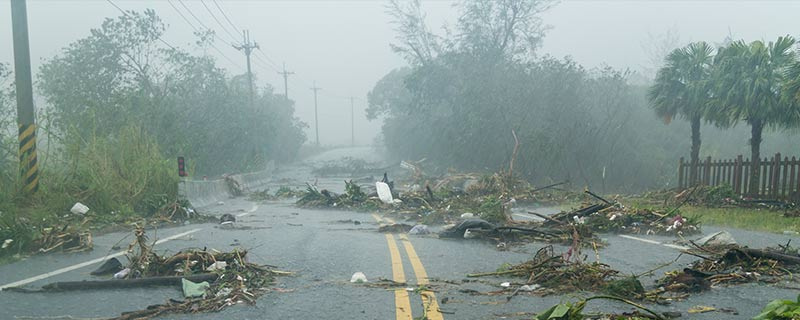 Debris in the road following a hurricane